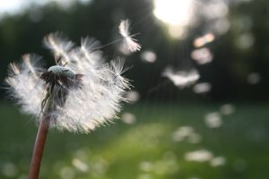 Съдба ли е всичко, което ни се случва в живота?